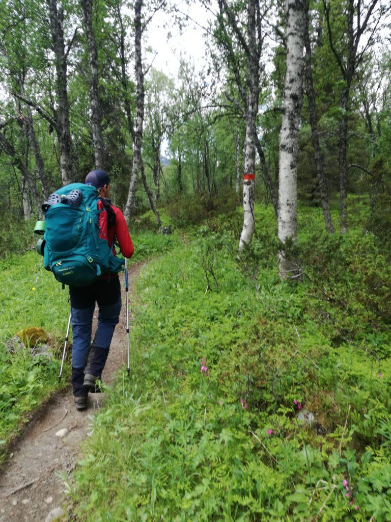 Van uitgestrekte toendravlaktes tot Canadese oerbossen